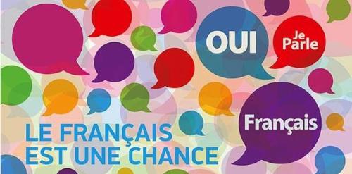 Cursuri de limba franceza pentru adulti in Timisoara